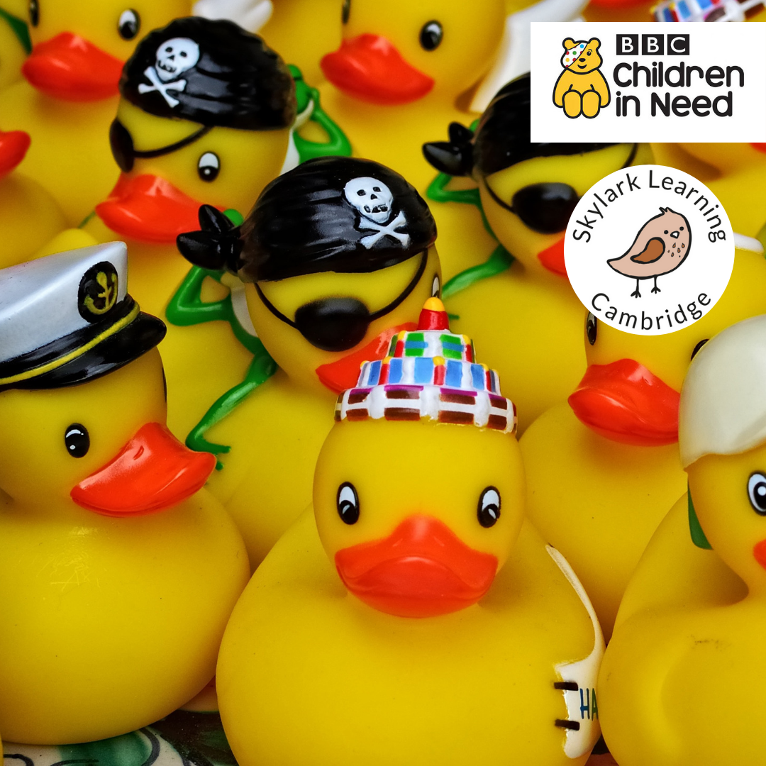 Ducks and paddle boards at The Centre for BBC Children in Need